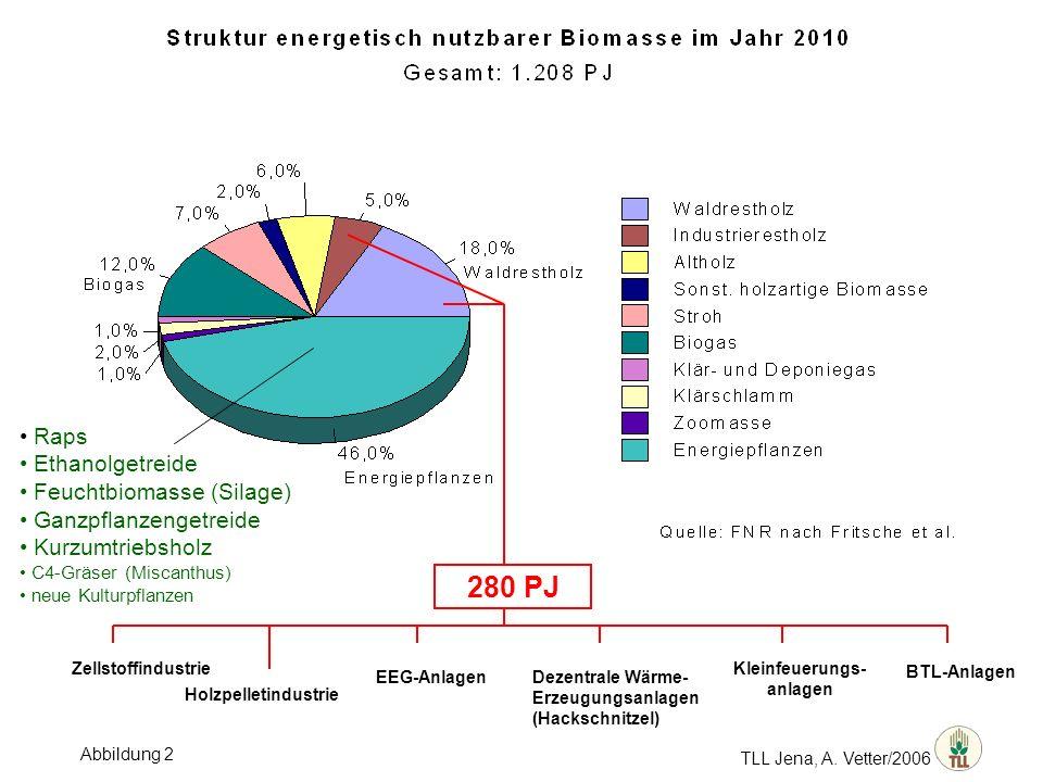 TLL Jena, A. Vetter/2006 Raps Ethanolgetreide Feuchtbiomasse (Silage) Ganzpflanzengetreide Kurzumtriebsholz C4-Gräser (Miscanthus) neue Kulturpflanzen