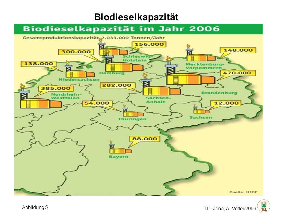 TLL Jena, A. Vetter/2006 Biodieselkapazität Abbildung 5