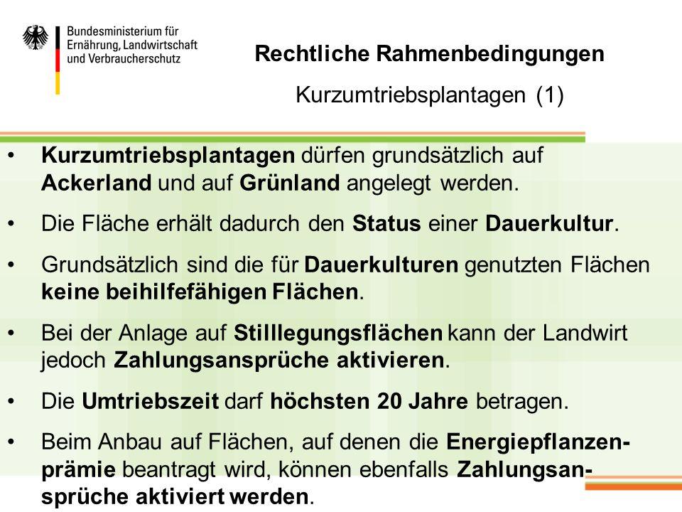 Rechtliche Rahmenbedingungen Kurzumtriebsplantagen (2) Werden Kurzumtriebsplantagen auf Grünland angelegt, müssen landesrechtliche Regelungen (z.B.