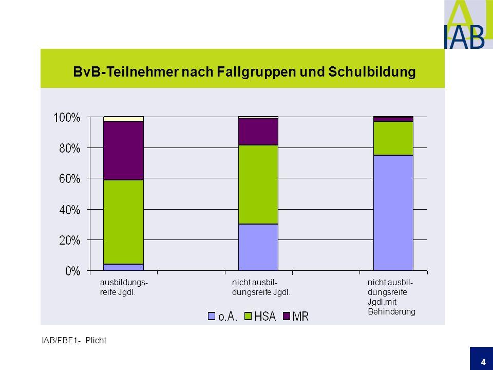 4 BvB-Teilnehmer nach Fallgruppen und Schulbildung IAB/FBE1- Plicht ausbildungs- reife Jgdl.