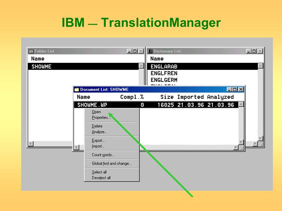 IBM TranslationManager