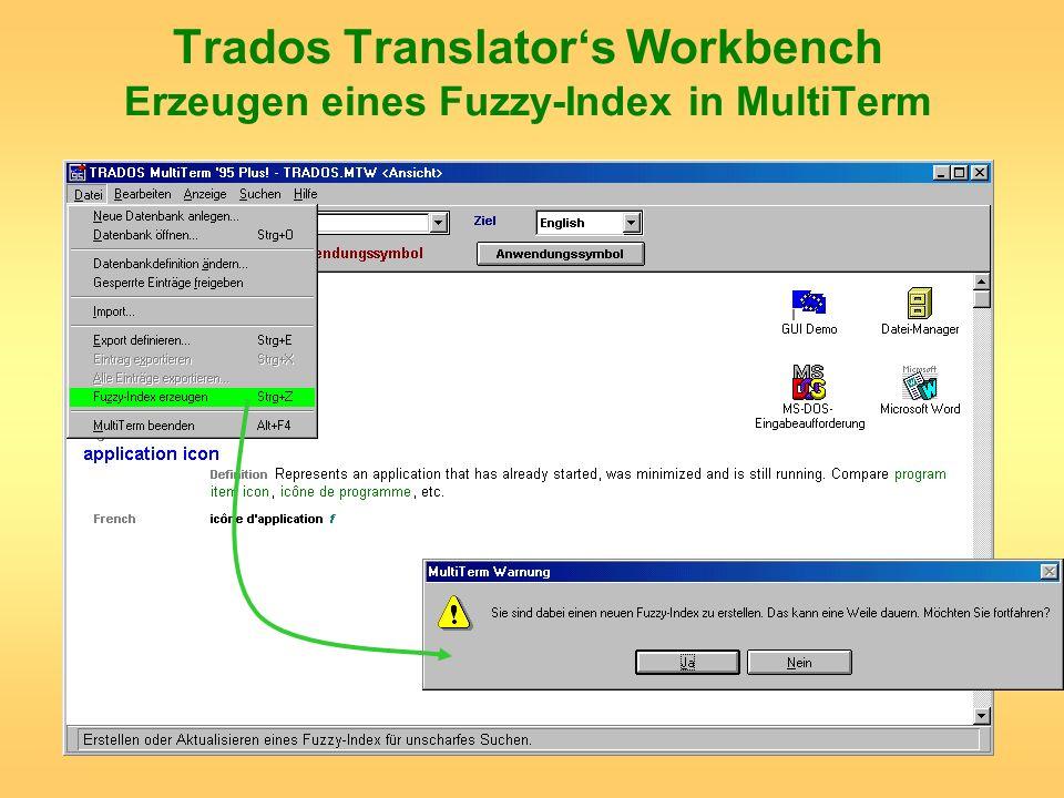Trados Translators Workbench Erzeugen eines Fuzzy-Index in MultiTerm