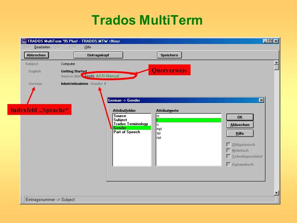 Trados MultiTerm Indexfeld Sprache Querverweis