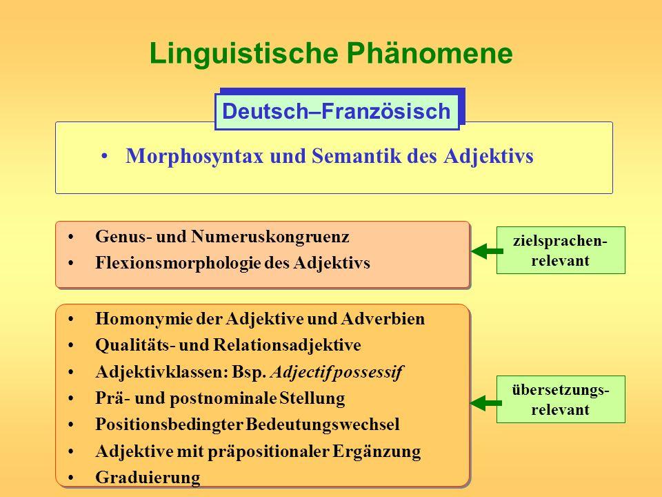 Linguistische Phänomene Morphosyntax und Semantik des Adjektivs Deutsch–Französisch Genus- und Numeruskongruenz Flexionsmorphologie des Adjektivs Homo