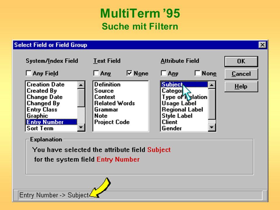 MultiTerm 95 Suche mit Filtern