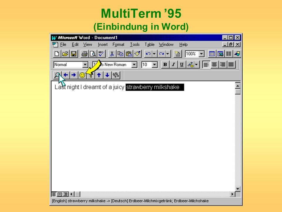 MultiTerm 95 (Einbindung in Word)