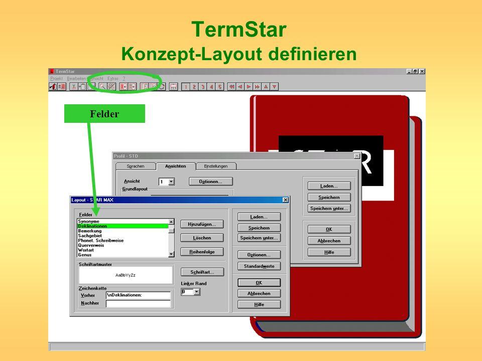 TermStar Konzept-Layout definieren Felder