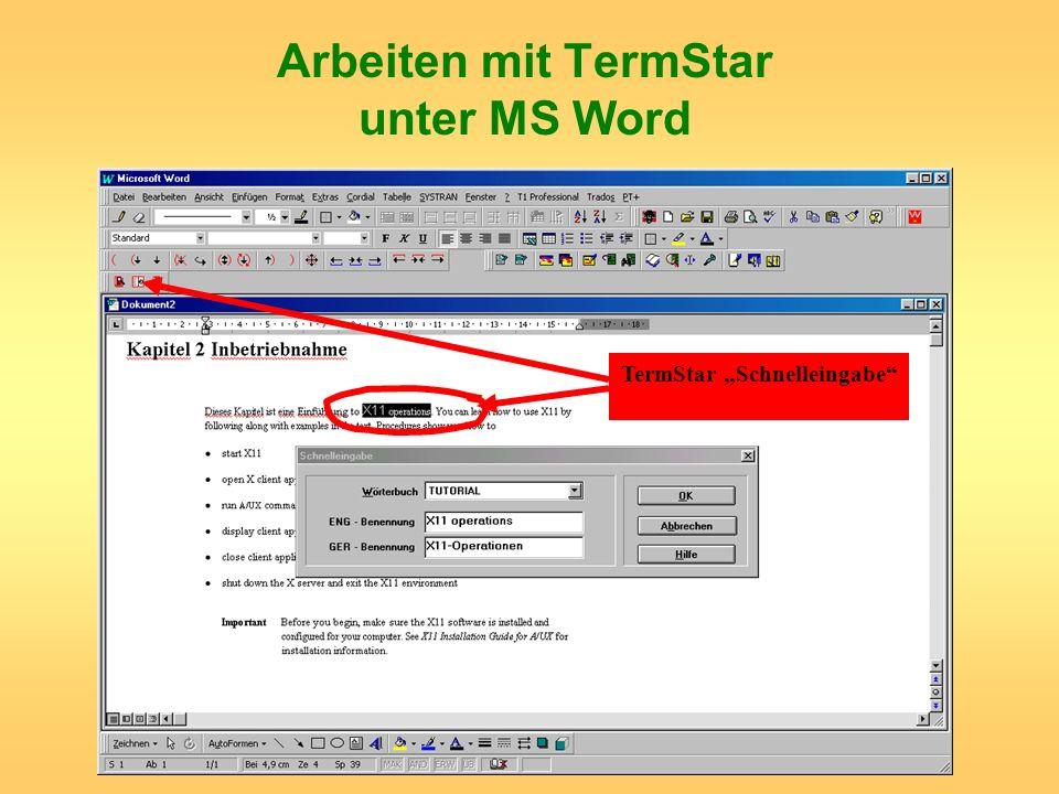 Arbeiten mit TermStar unter MS Word TermStar Schnelleingabe