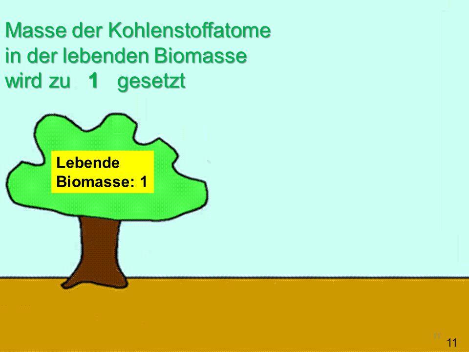 12 Lebende Biomasse: 1 Abgestorbene Biomasse: 2,6 Masse der Kohlenstoff- atome in der abgestor- benen Biomasse ist 2,6 mal so groß, sie wird zu 2,6 gesetzt 12