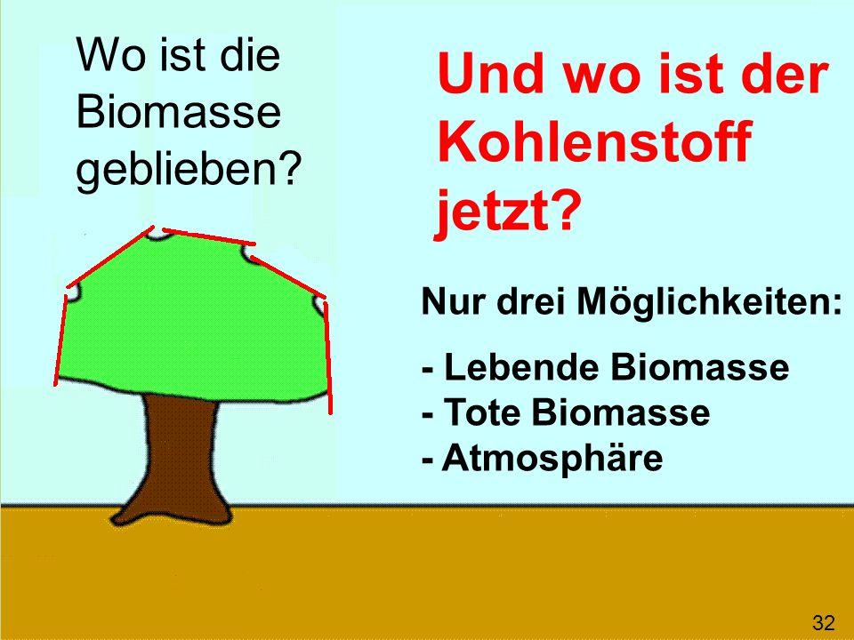 Kohlenstoff auf der Erde behalten! Stoffliche Nutzung! 33