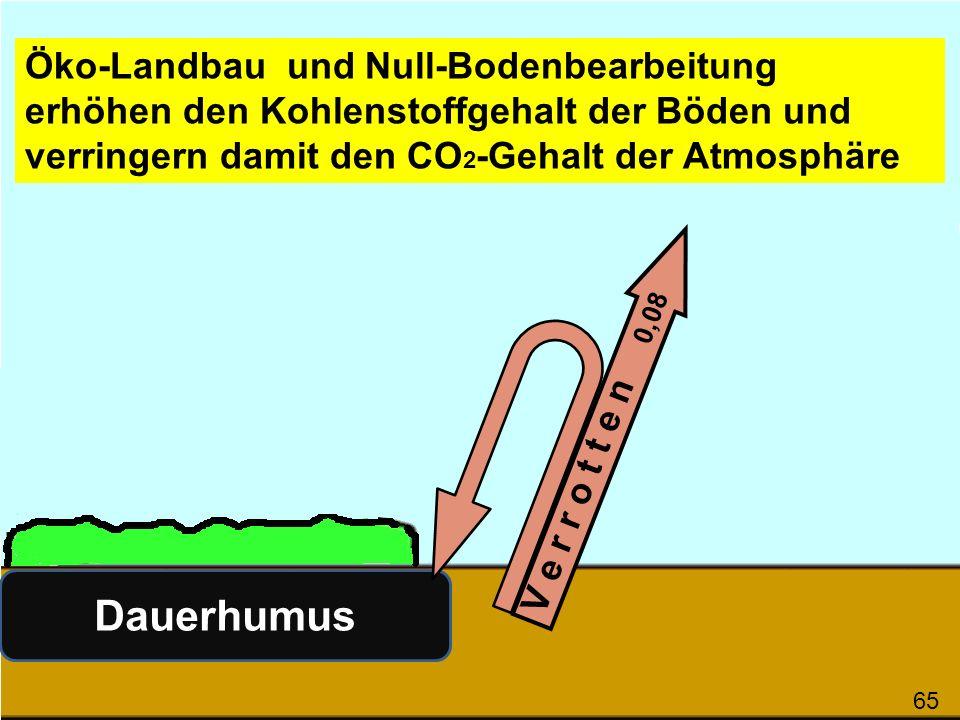 V e r r o t t e n 0,08 Dauerhumus Naturwald erhöht den Kohlenstoff- gehalt der Böden und verringert damit den CO 2 -Gehalt der Atmosphäre 66