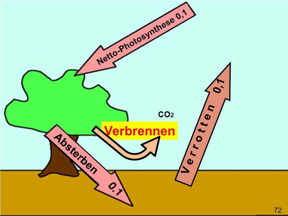 Verbrennen V e r r o t t e n 0,1 CO 2 Verbrennen schafft unter Umgehung der abgestorbenen Biomasse CO 2 in die Atmosphäre 73