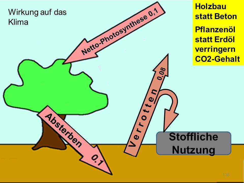 136 Stoffliche Nutzung V e r r o t t e n 0,08 Holzbau statt Beton Pflanzenöl statt Erdöl verringern CO2-Gehalt Wirkung auf das Klima