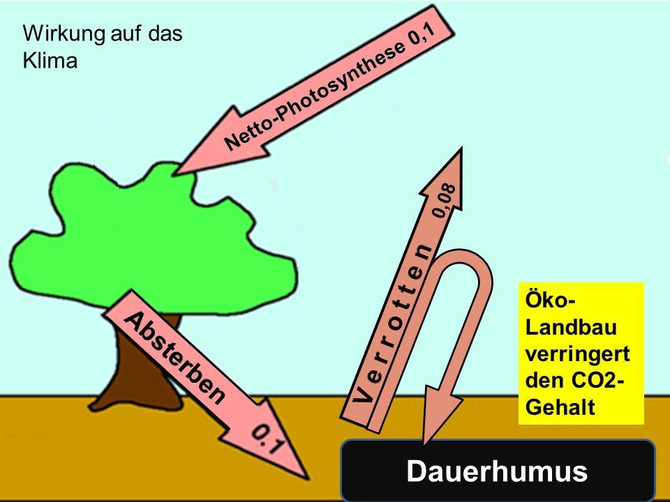 138 V e r r o t t e n 0,08 Dauerhumus Öko- Landbau verringert den CO2- Gehalt Wirkung auf das Klima