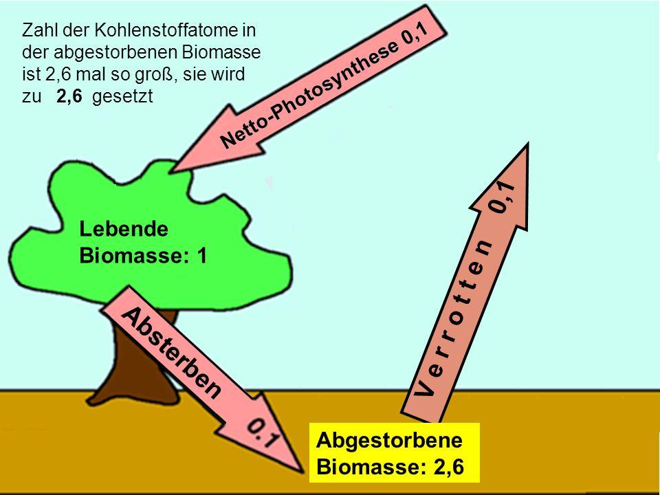 33 V e r r o t t e n 0,1 Lebende Biomasse: 1 Abgestorbene Biomasse: 2,6 Zahl der Kohlenstoffatome in der abgestorbenen Biomasse ist 2,6 mal so groß, s