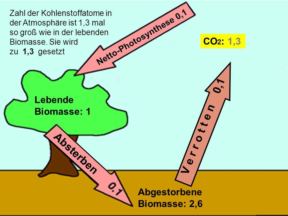 34 V e r r o t t e n 0,1 Lebende Biomasse: 1 Abgestorbene Biomasse: 2,6 CO 2 : 1,3 Zahl der Kohlenstoffatome in der Atmosphäre ist 1,3 mal so groß wie