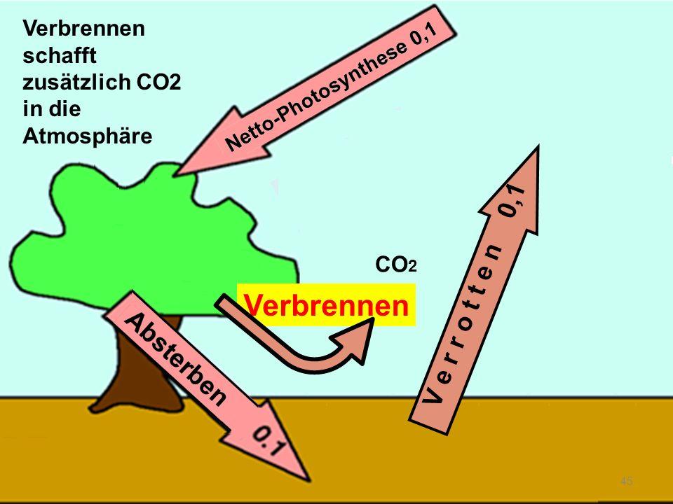 Verbrennen 45 V e r r o t t e n 0,1 Verbrennen schafft zusätzlich CO2 in die Atmosphäre CO 2
