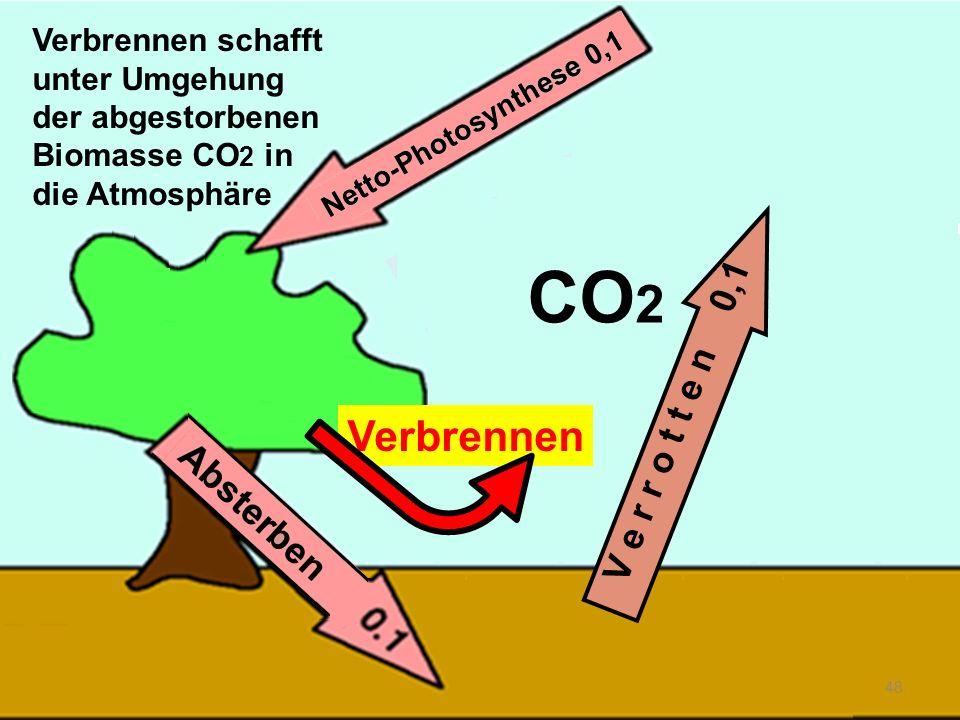 Verbrennen 48 V e r r o t t e n 0,1 CO 2 Verbrennen schafft unter Umgehung der abgestorbenen Biomasse CO 2 in die Atmosphäre