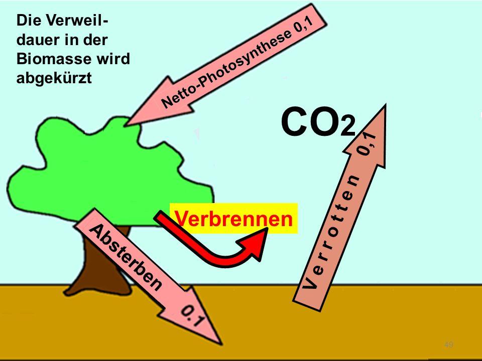 Verbrennen 49 V e r r o t t e n 0,1 CO 2 Die Verweil- dauer in der Biomasse wird abgekürzt