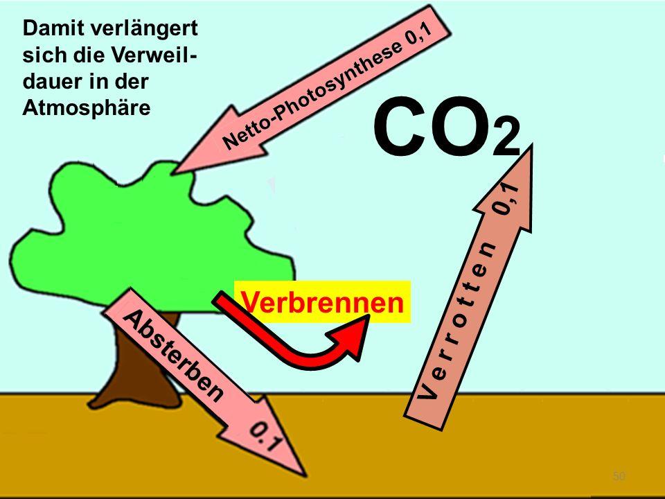 Verbrennen 50 V e r r o t t e n 0,1 CO 2 Damit verlängert sich die Verweil- dauer in der Atmosphäre