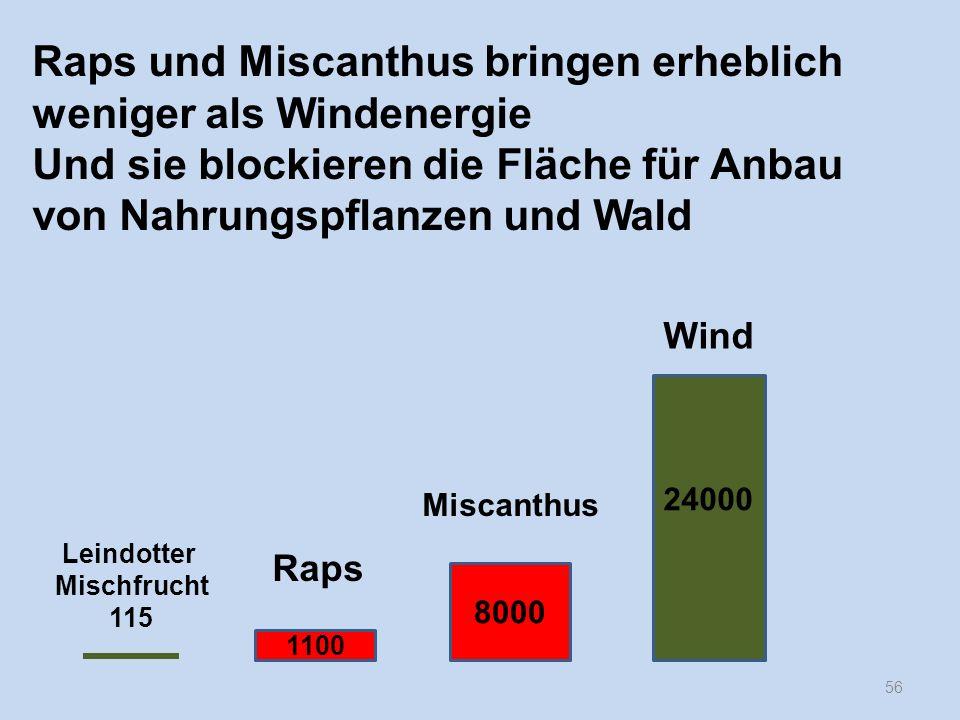 56 Raps und Miscanthus bringen erheblich weniger als Windenergie Und sie blockieren die Fläche für Anbau von Nahrungspflanzen und Wald 24000 8000 1100