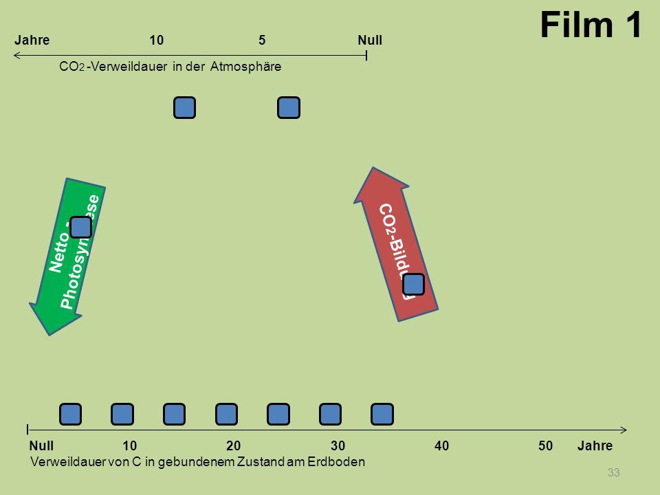 Netto - Photosynthese CO 2 -Bildung 33 1020304050 Jahre Verweildauer von C in gebundenem Zustand am Erdboden CO 2 -Verweildauer in der Atmosphäre Null
