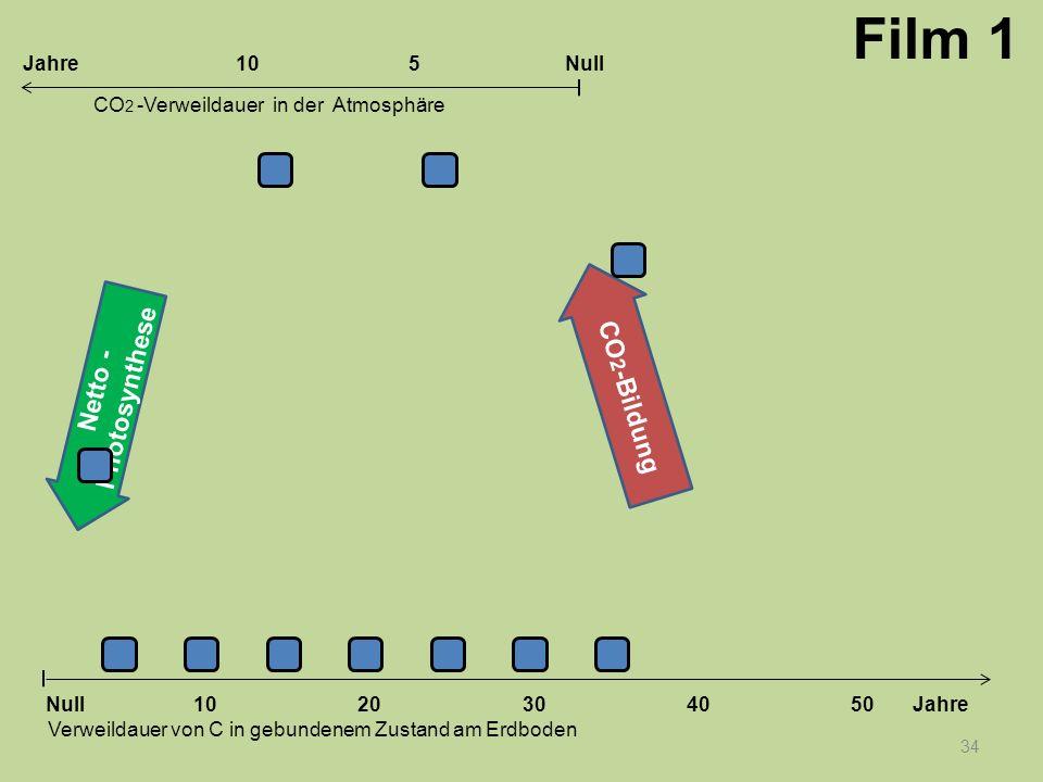 Netto - Photosynthese CO 2 -Bildung 34 1020304050 Jahre Verweildauer von C in gebundenem Zustand am Erdboden CO 2 -Verweildauer in der Atmosphäre Null