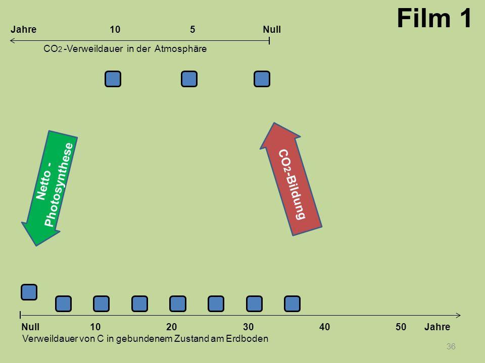 36 1020304050 Jahre Verweildauer von C in gebundenem Zustand am Erdboden CO 2 -Verweildauer in der Atmosphäre Null 10Null5Jahre Film 1 Netto - Photosy