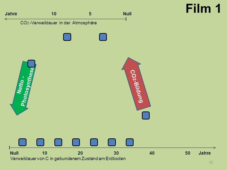Netto - Photosynthese CO 2 -Bildung 42 1020304050 Jahre Verweildauer von C in gebundenem Zustand am Erdboden CO 2 -Verweildauer in der Atmosphäre Null