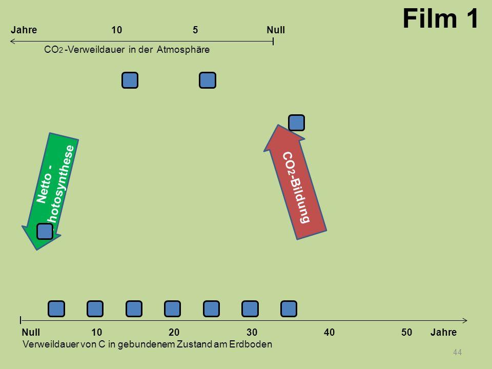 Netto - Photosynthese CO 2 -Bildung 44 1020304050 Jahre Verweildauer von C in gebundenem Zustand am Erdboden CO 2 -Verweildauer in der Atmosphäre Null