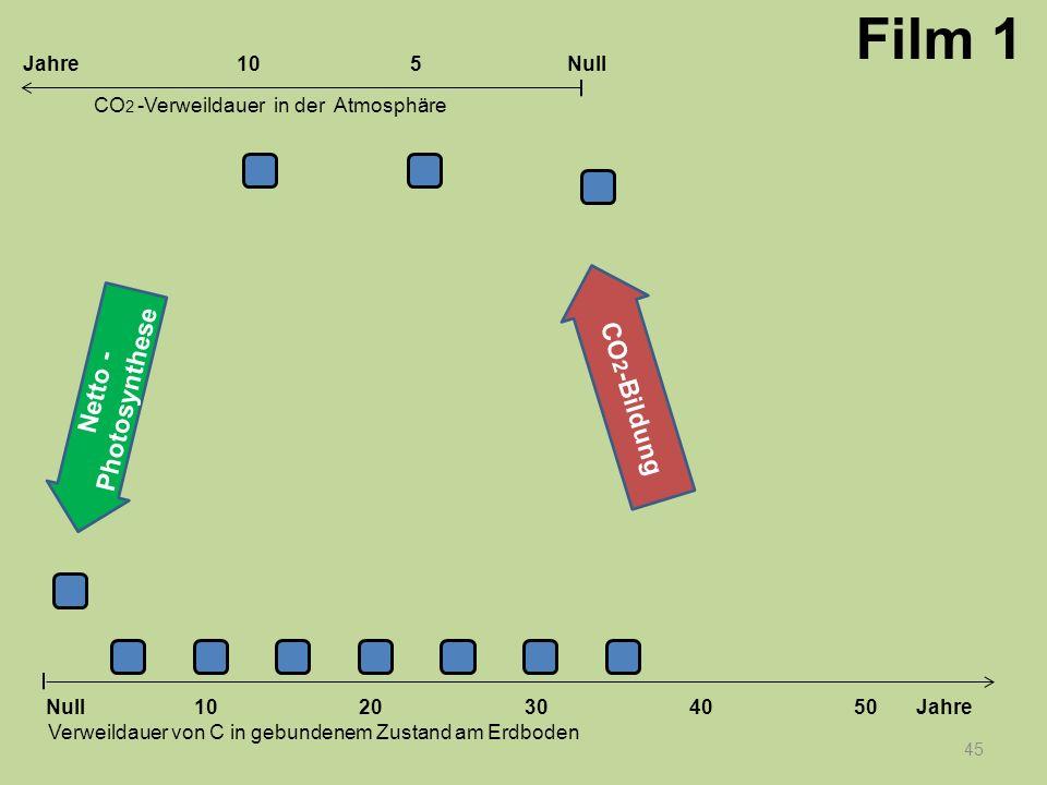 45 1020304050 Jahre Verweildauer von C in gebundenem Zustand am Erdboden CO 2 -Verweildauer in der Atmosphäre Null 10Null5Jahre Film 1 Netto - Photosy