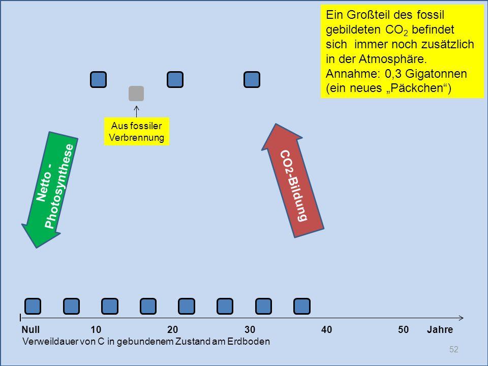 52 1020304050 Jahre Verweildauer von C in gebundenem Zustand am Erdboden Null Netto - Photosynthese CO 2 -Bildung Ein Großteil des fossil gebildeten C