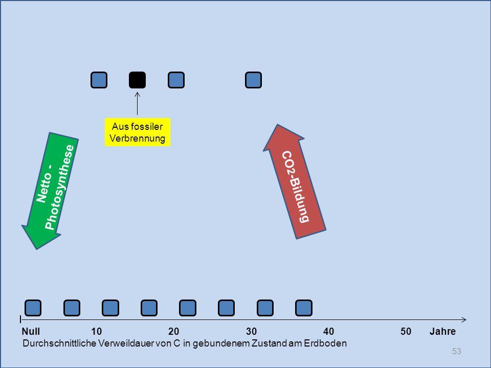 53 1020304050 Jahre Durchschnittliche Verweildauer von C in gebundenem Zustand am Erdboden CO 2 -Bildung Null Netto - Photosynthese Aus fossiler Verbr