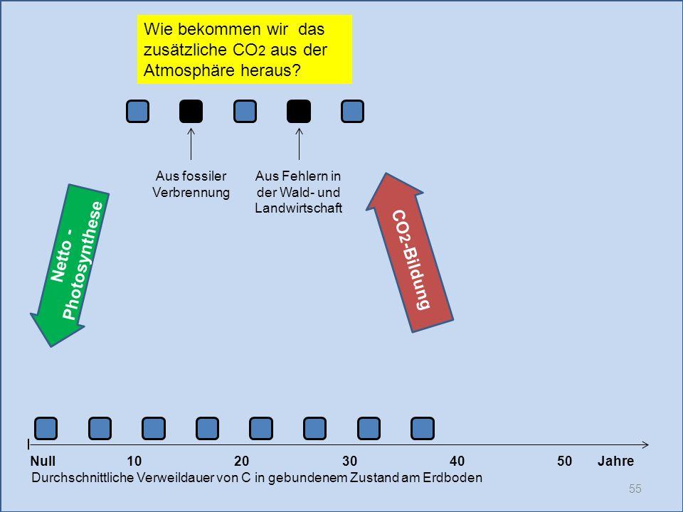 55 1020304050 Jahre Durchschnittliche Verweildauer von C in gebundenem Zustand am Erdboden CO 2 -Bildung Null Netto - Photosynthese Aus fossiler Verbr