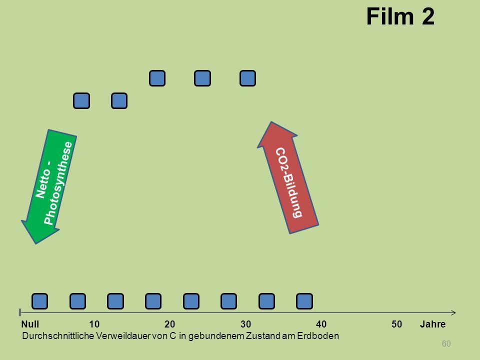 60 1020304050 Jahre Durchschnittliche Verweildauer von C in gebundenem Zustand am Erdboden Null Netto - Photosynthese CO 2 -Bildung Film 2