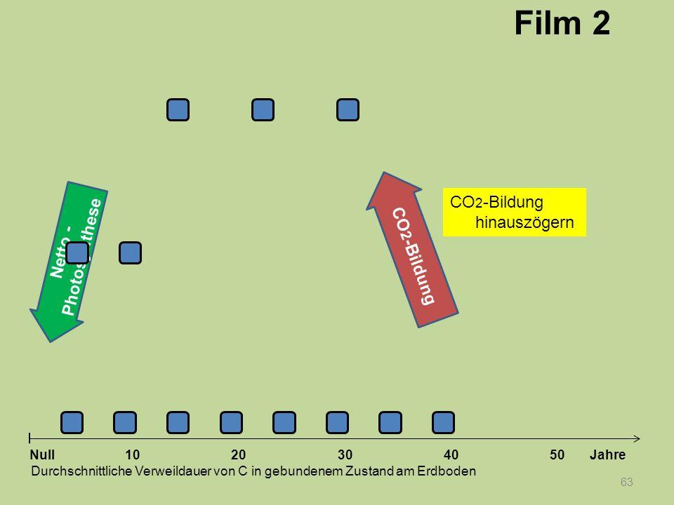 Netto - Photosynthese 63 1020304050 Jahre Durchschnittliche Verweildauer von C in gebundenem Zustand am Erdboden Null CO 2 -Bildung Film 2 CO 2 -Bildu