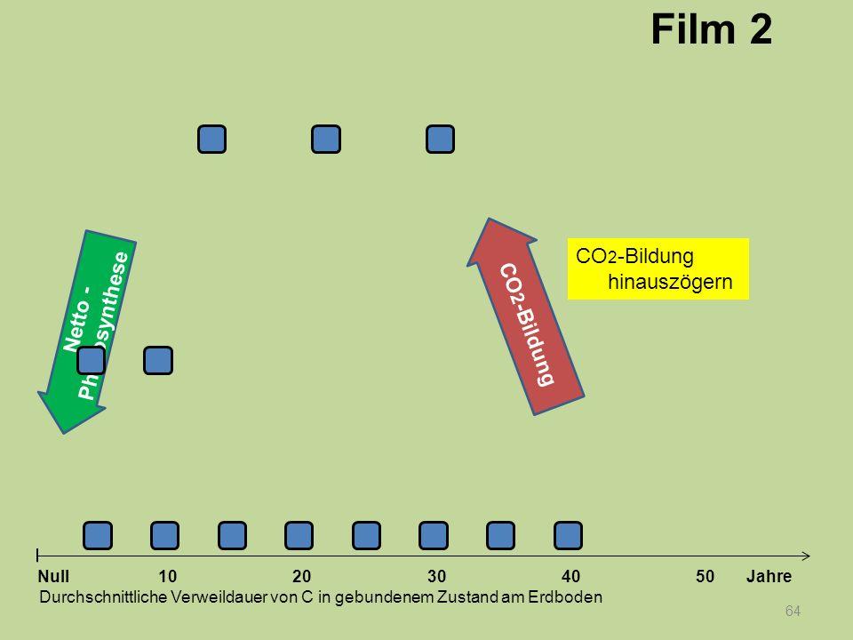 Netto - Photosynthese 64 1020304050 Jahre Durchschnittliche Verweildauer von C in gebundenem Zustand am Erdboden Null CO 2 -Bildung Film 2 CO 2 -Bildu