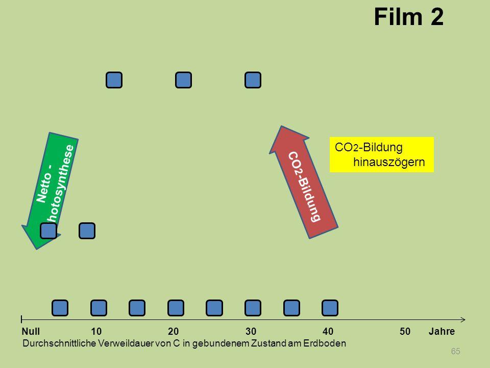 Netto - Photosynthese 65 1020304050 Jahre Durchschnittliche Verweildauer von C in gebundenem Zustand am Erdboden Null CO 2 -Bildung Film 2 CO 2 -Bildu
