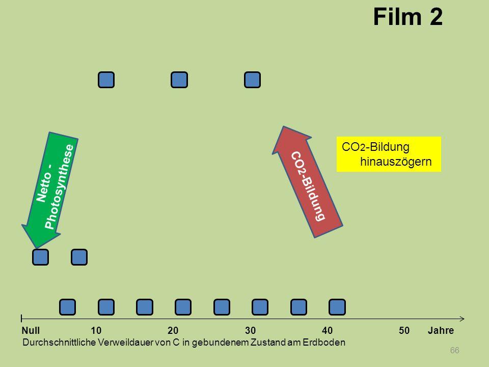 Netto - Photosynthese 66 1020304050 Jahre Durchschnittliche Verweildauer von C in gebundenem Zustand am Erdboden Null CO 2 -Bildung Film 2 CO 2 -Bildu
