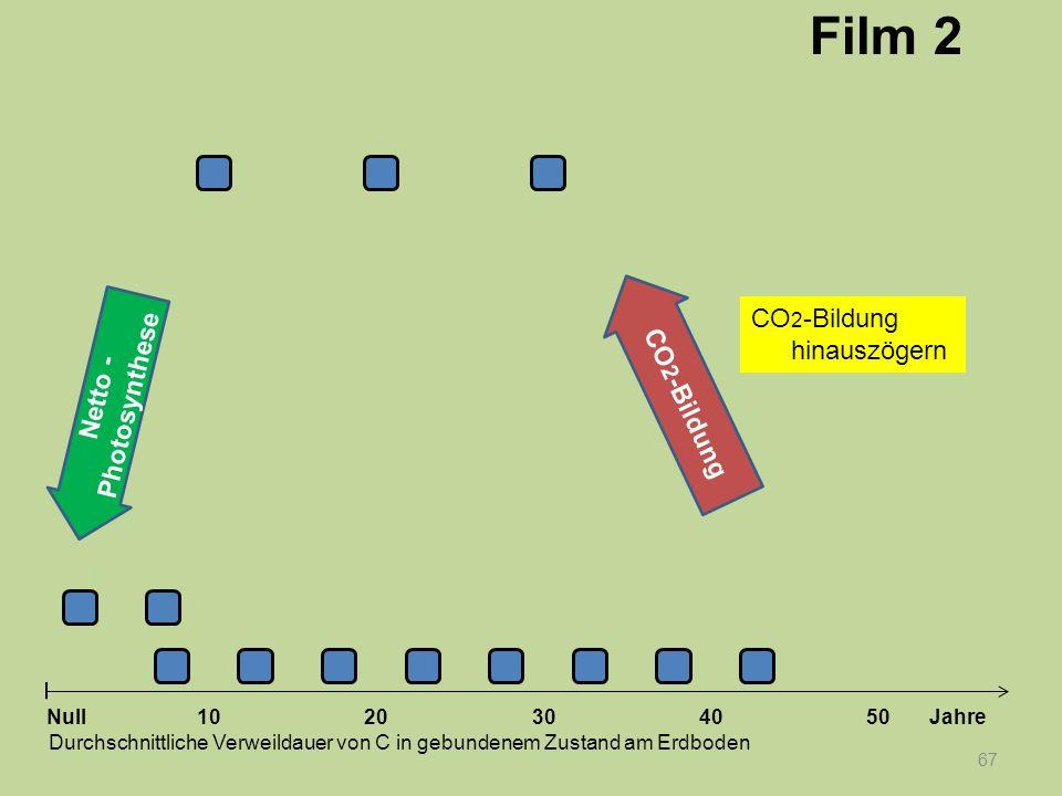 Netto - Photosynthese 67 1020304050 Jahre Durchschnittliche Verweildauer von C in gebundenem Zustand am Erdboden Null CO 2 -Bildung Film 2 CO 2 -Bildu