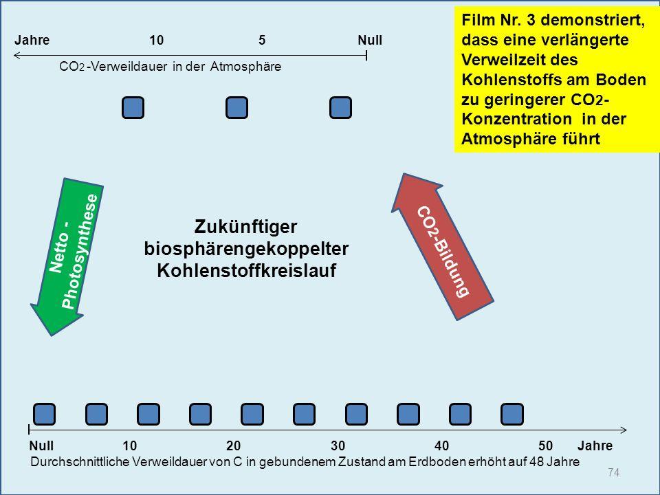 74 1020304050 Jahre Durchschnittliche Verweildauer von C in gebundenem Zustand am Erdboden erhöht auf 48 Jahre Null Film Nr. 3 demonstriert, dass eine