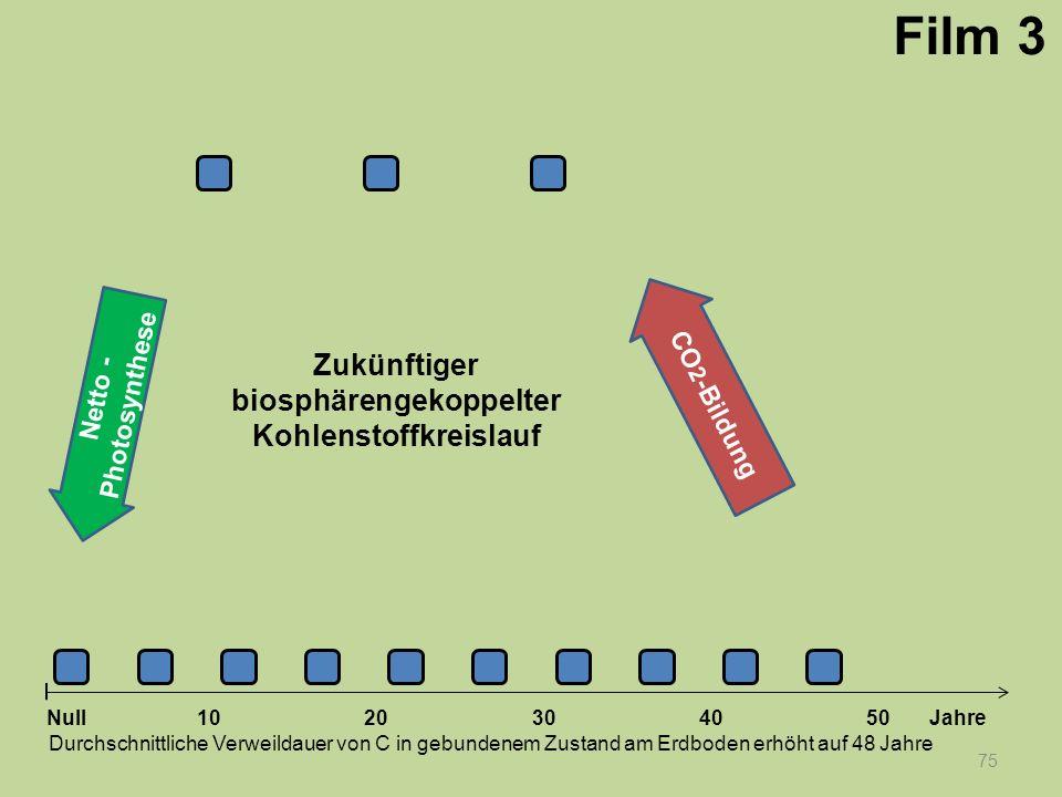 Netto - Photosynthese 75 1020304050 Jahre Durchschnittliche Verweildauer von C in gebundenem Zustand am Erdboden erhöht auf 48 Jahre Null CO 2 -Bildun