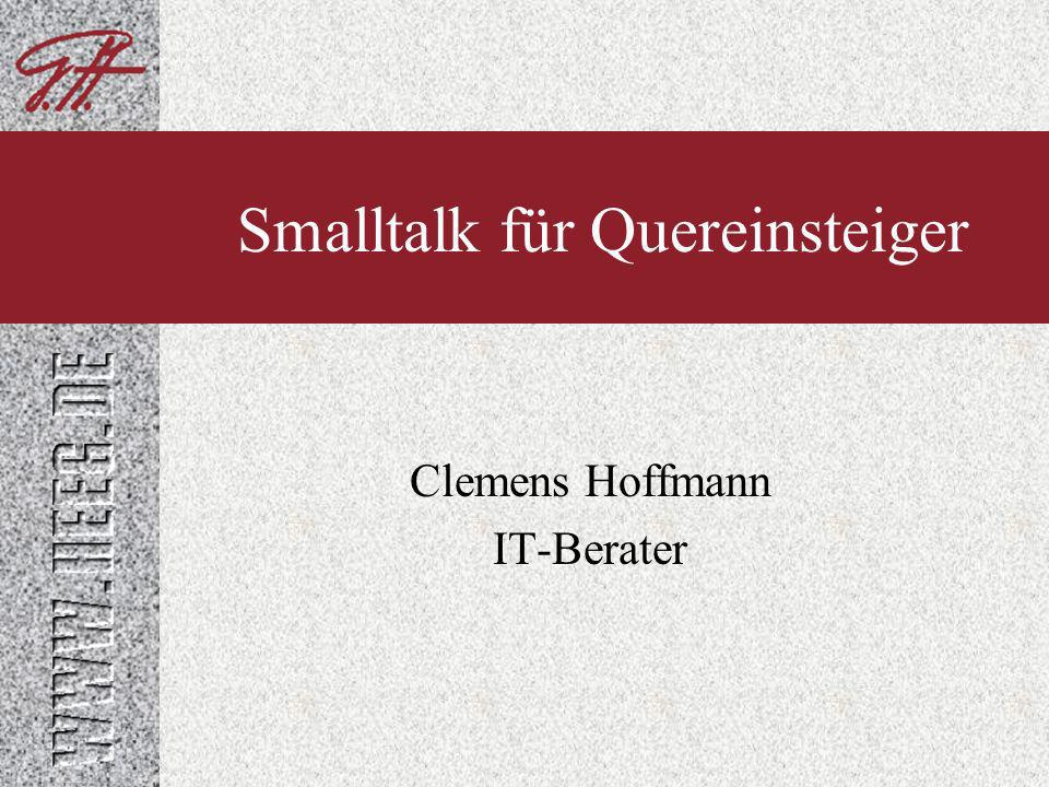 Clemens Hoffmann IT-Berater Smalltalk für Quereinsteiger