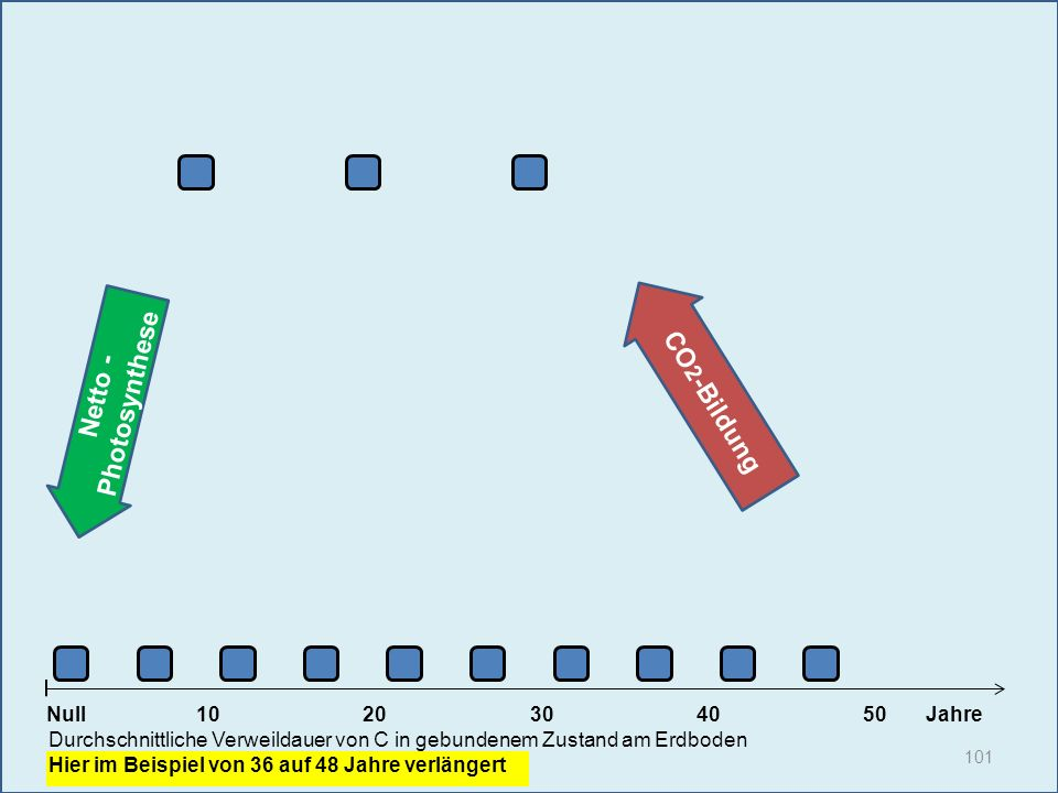 Netto - Photosynthese 101 1020304050 Jahre Durchschnittliche Verweildauer von C in gebundenem Zustand am Erdboden Hier im Beispiel von 36 auf 48 Jahre
