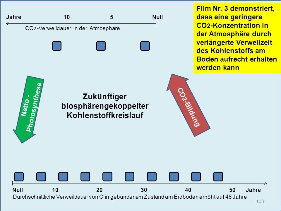 103 1020304050 Jahre Durchschnittliche Verweildauer von C in gebundenem Zustand am Erdboden erhöht auf 48 Jahre Null Film Nr. 3 demonstriert, dass ein