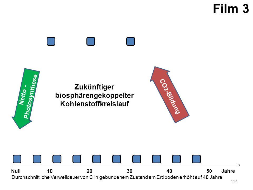 Netto - Photosynthese 114 1020304050 Jahre Durchschnittliche Verweildauer von C in gebundenem Zustand am Erdboden erhöht auf 48 Jahre Null CO 2 -Bildu