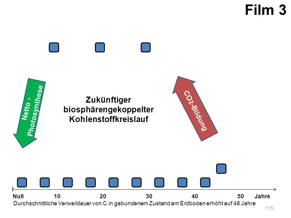 Netto - Photosynthese 115 1020304050 Jahre Durchschnittliche Verweildauer von C in gebundenem Zustand am Erdboden erhöht auf 48 Jahre Null CO 2 -Bildu