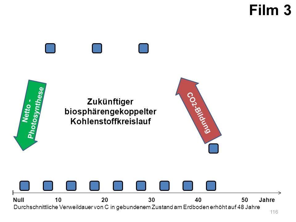 Netto - Photosynthese 116 1020304050 Jahre Durchschnittliche Verweildauer von C in gebundenem Zustand am Erdboden erhöht auf 48 Jahre Null CO 2 -Bildu