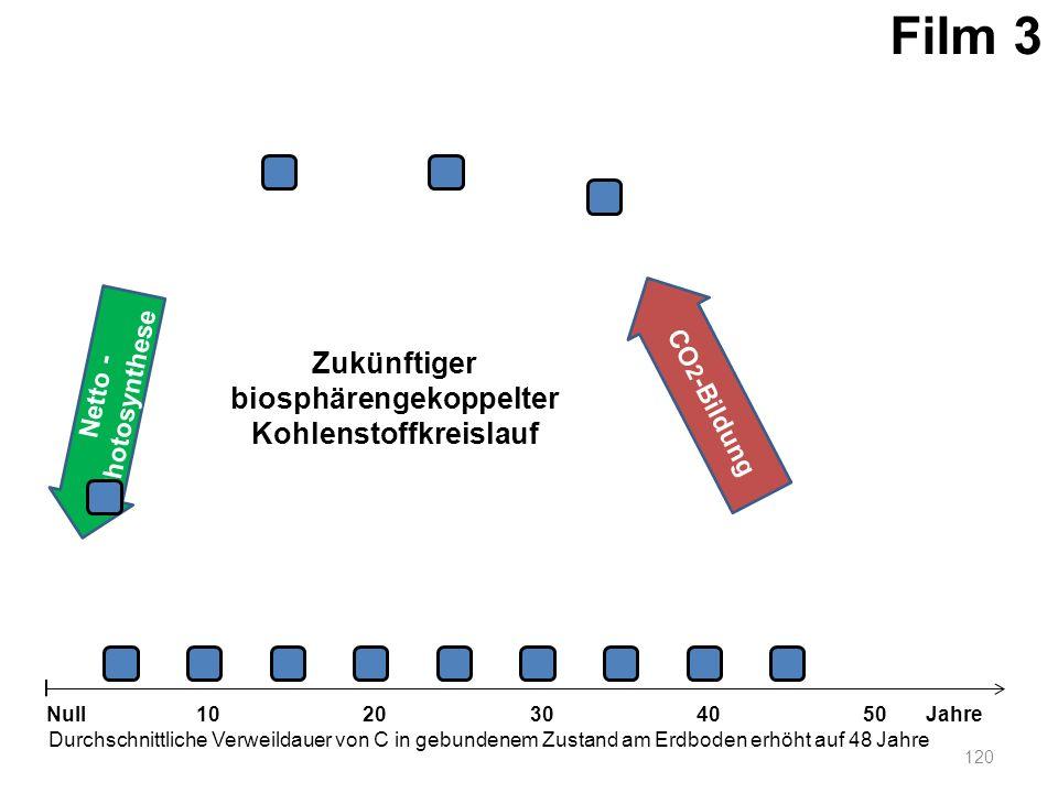 Netto - Photosynthese 120 1020304050 Jahre Durchschnittliche Verweildauer von C in gebundenem Zustand am Erdboden erhöht auf 48 Jahre Null CO 2 -Bildu