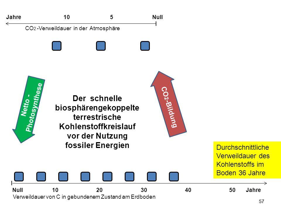 57 Der schnelle biosphärengekoppelte terrestrische Kohlenstoffkreislauf vor der Nutzung fossiler Energien Netto - Photosynthese 1020304050 Jahre Verwe